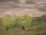 Rising Fog, 18x24, Oil on Panel